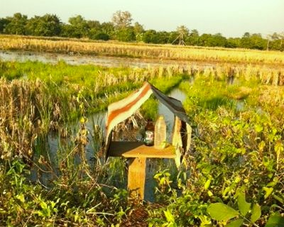 Rural Thai Spirit House